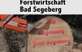 Sägewerk Bad Segeberg